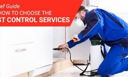 A Brief Guide on How to Choose the Pest Control Services